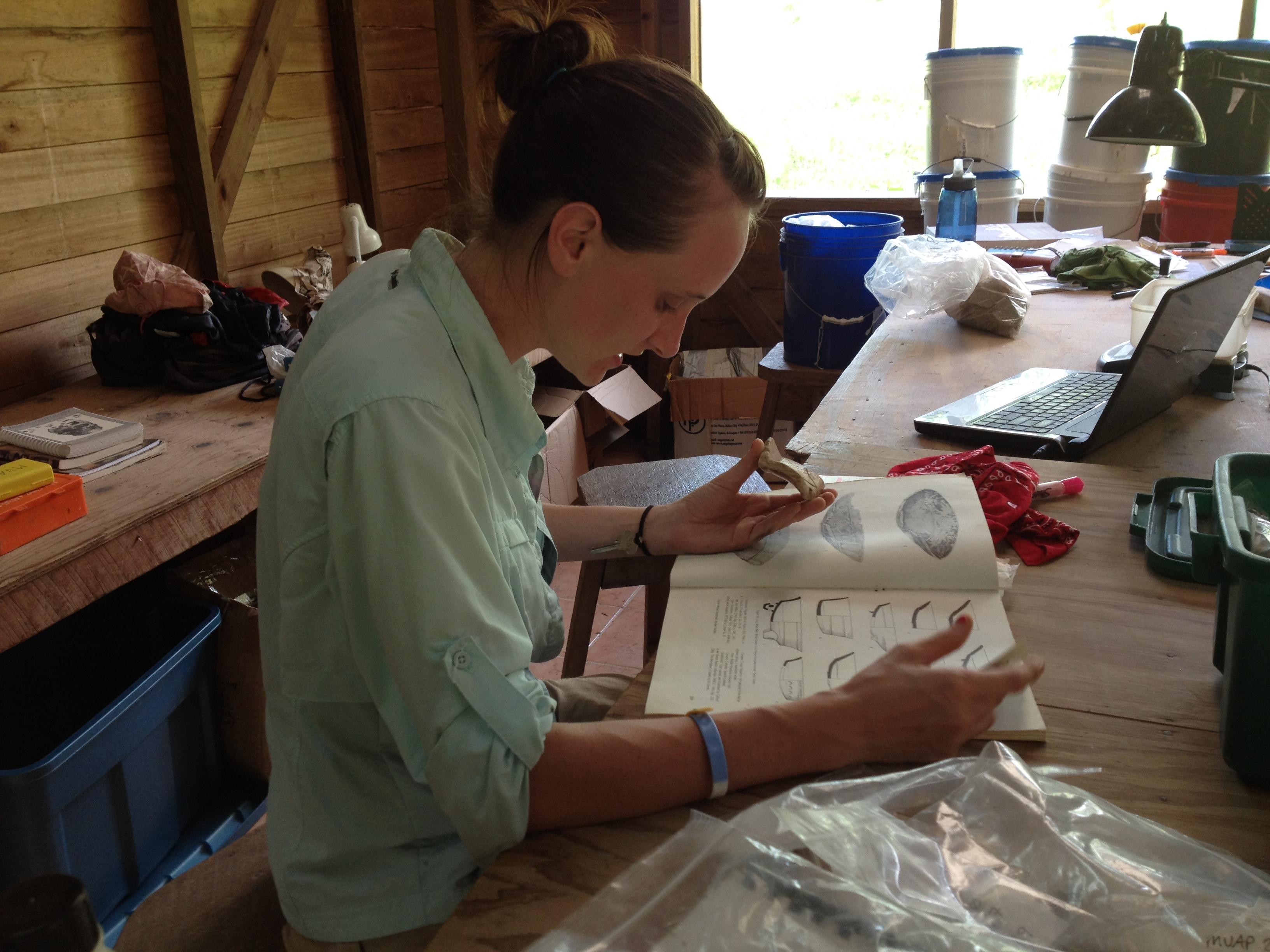 Christy classifying pottery shards